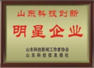 山東科技創新明星企業