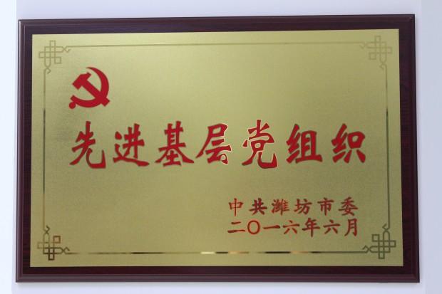 第一党支部荣获潍坊市优秀基层党组织