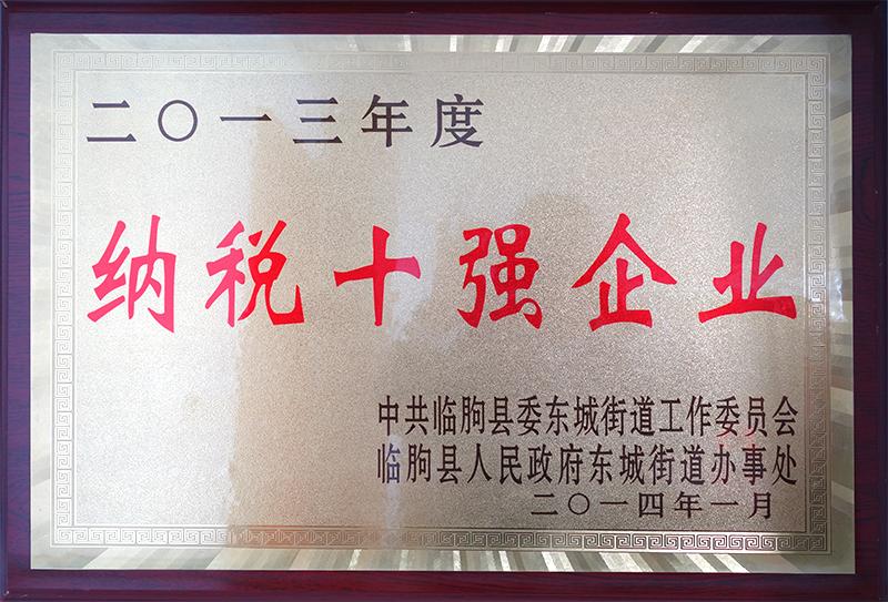 2013纳税十强大奖
