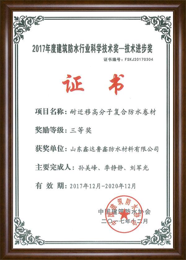 科學技術獎-技術進步獎