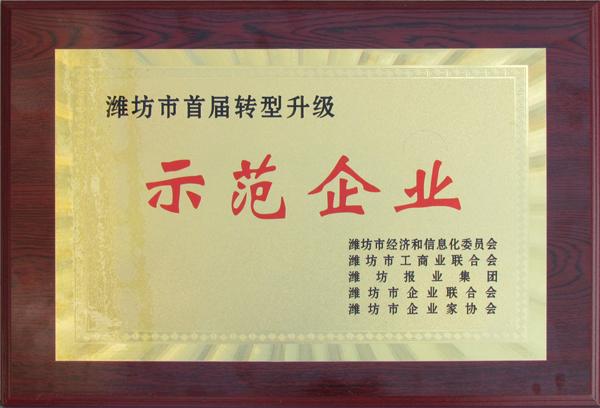 潍坊市首届转型升级示范企业